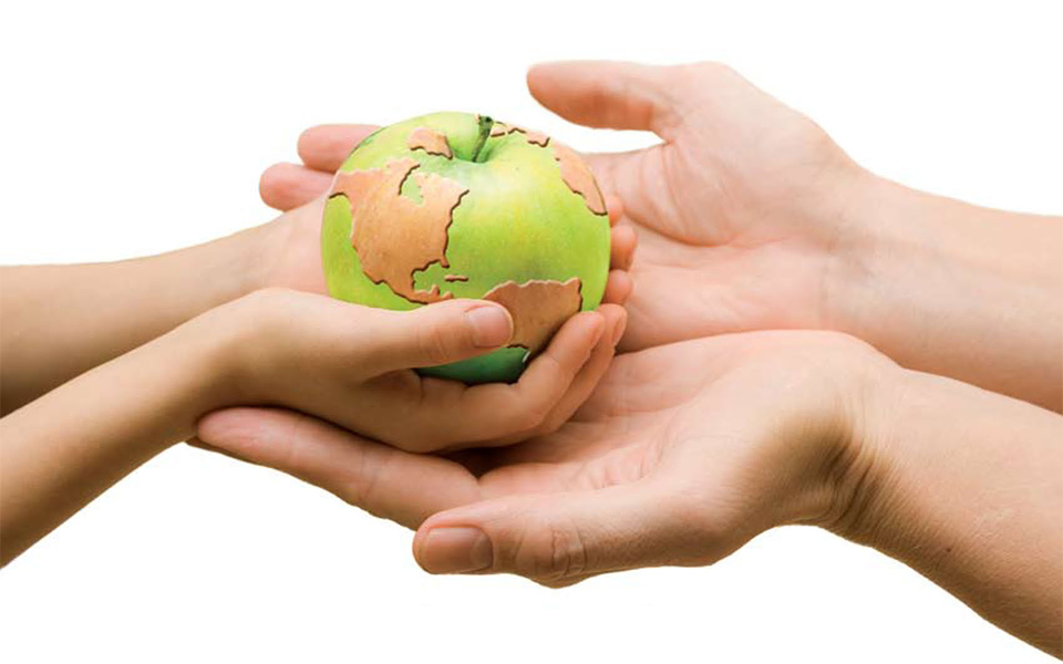 Concurso De Carteles Por El Dia Mundial De La Alimentacion Campucss