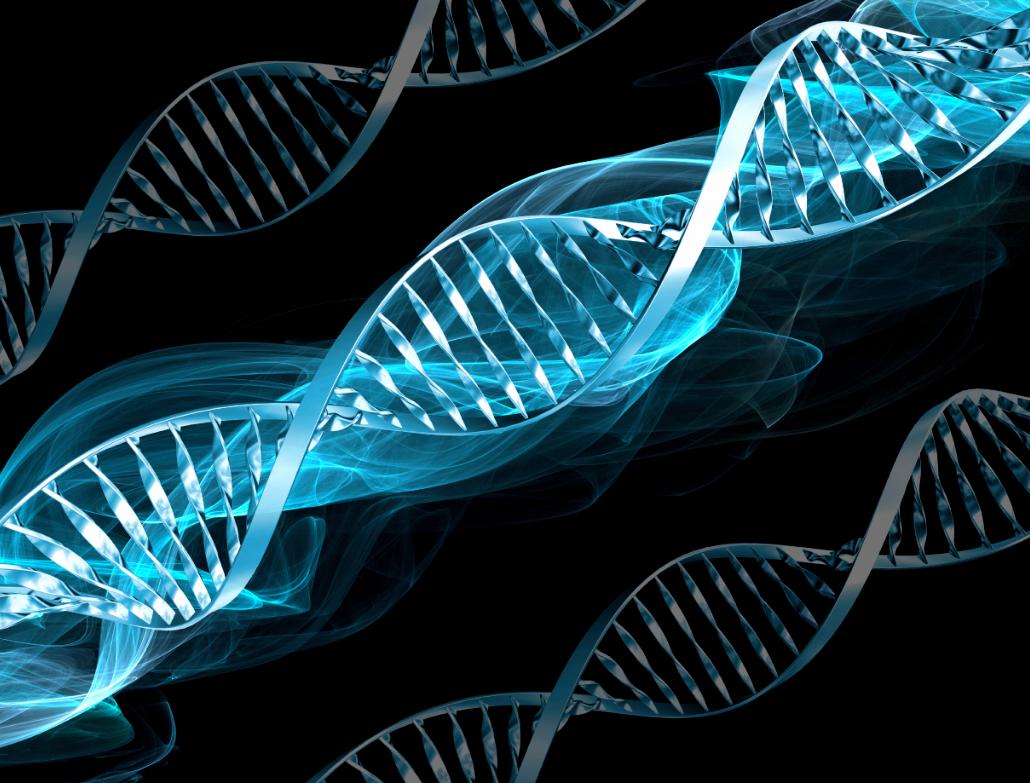 ¿Puede la bioética constituirse en diálogo democrático entre posturas rivales?